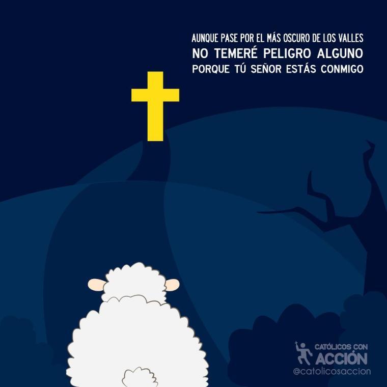 Catolicos con acción