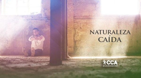 naturaleza-caida-catolicos-con-accion